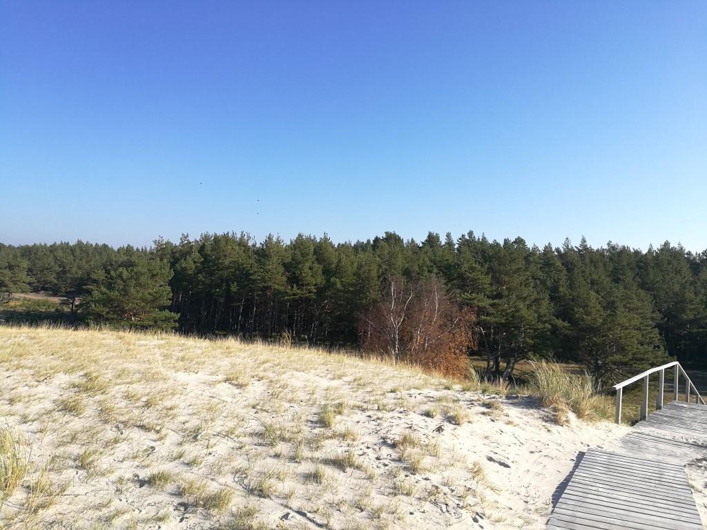 Les dunes de l'Isthme de Courlande