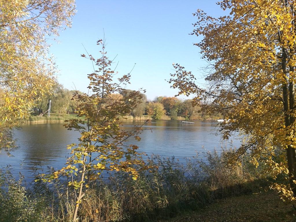 Un parc d'activités nautiques à Klaipeda