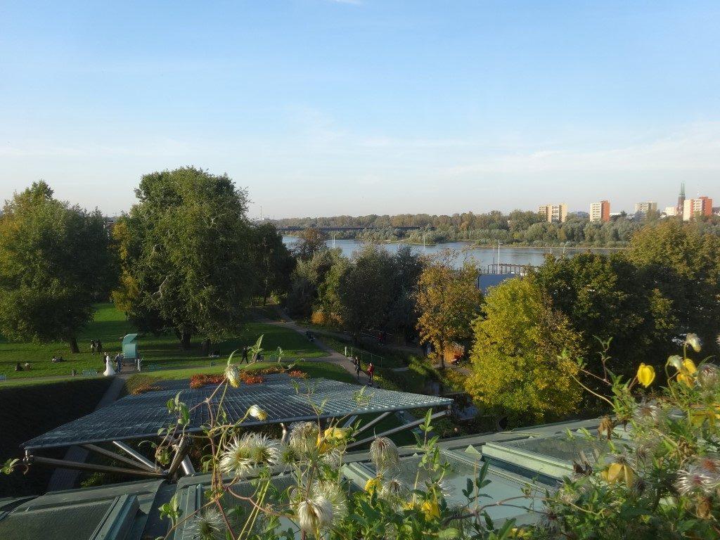 Le jardin aménagé sur le toit de la bibliothèque de l'universit de Varsovie