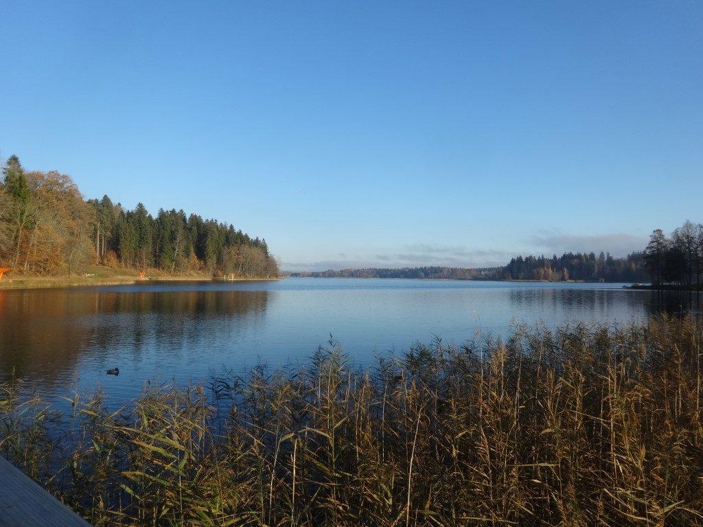 Le lac d'Aluksne sous le soleil