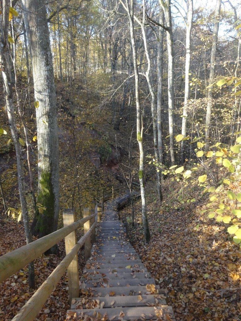 Le parc national de Gauja, les escaliers qui descendent vers la rivière