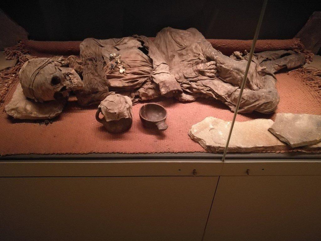 Une momie particulièrement bien conservée au musée de l'Hermitage