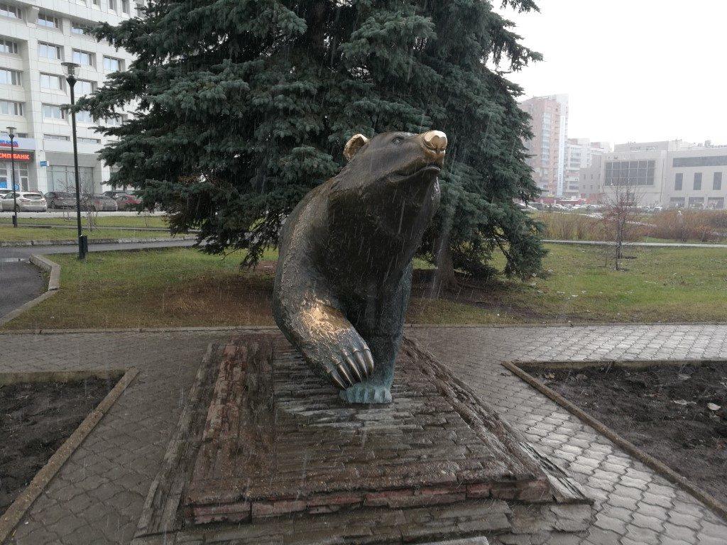 L'ours de Sibérie, sous la neige