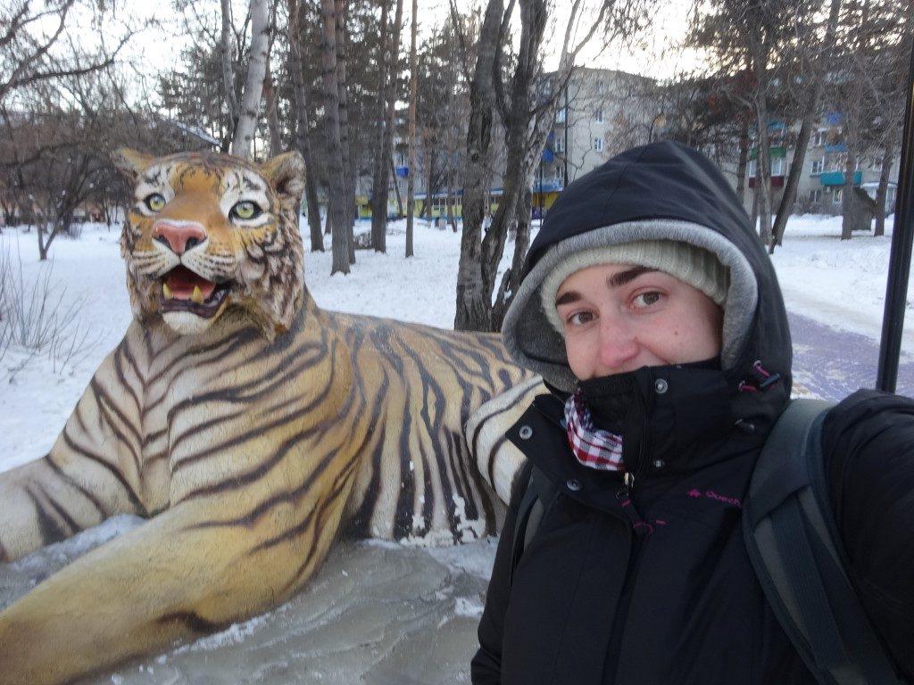 Avec un tigre de Sibérie, espèce en voie de disparition