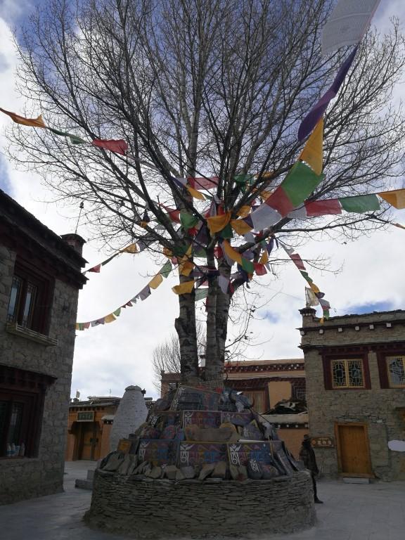 Un arbre sacré à Litang